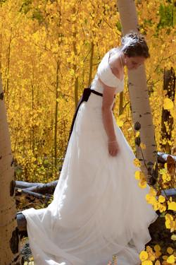 Wedding_2014_002