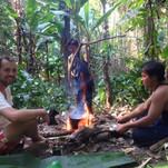 im Dschungel überleben