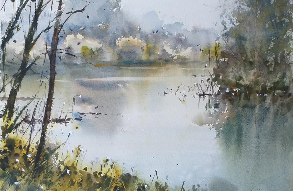 Mattina nebbiosa sul fiume Zero - Matteo Bertomoro