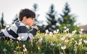 Understanding ASD in Children