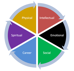 The Wellness Wheel
