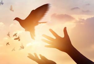Forgiveness...Sets You Free