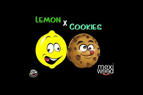 Lemon Cookies Pack 5 Semillas