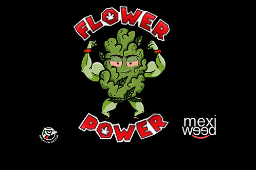 Flower Power Pack 5 Semillas