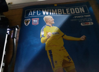 Joe Day's impressive keeping ensures AFC Wimbledon hold Ipswich Town