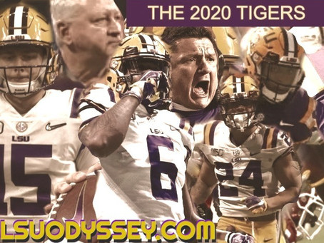 TOP 10 TIGERS OF 2020 #1