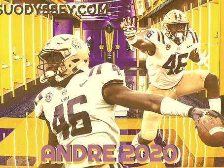 TOP 10 TIGERS OF 2020: #8 ANDRE ANTHONY