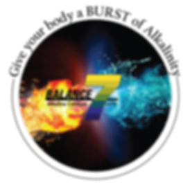 b7 circle logo.png