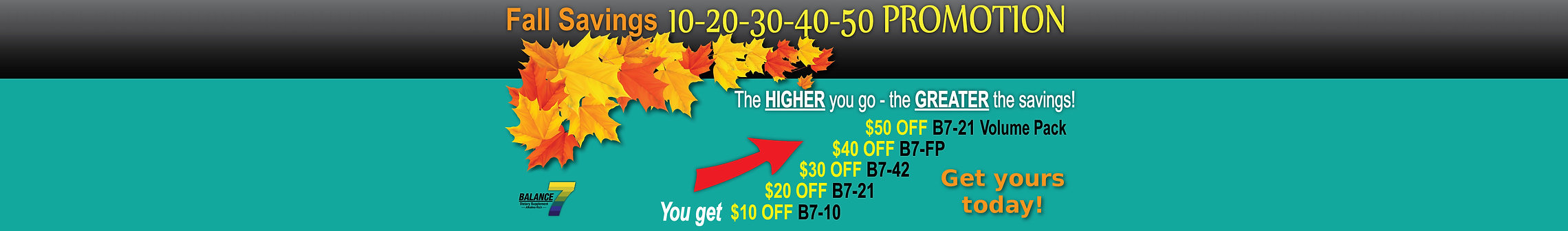 Fall Promo Banner - Sale Page - FINAL 10