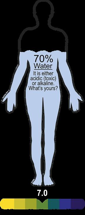 Waterman2.png