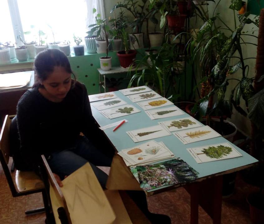 на этапе ботаника