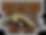 1200px-Western_Michigan_Broncos_logo.png