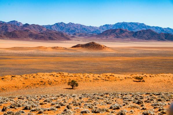 YG_Namibia-93.jpg