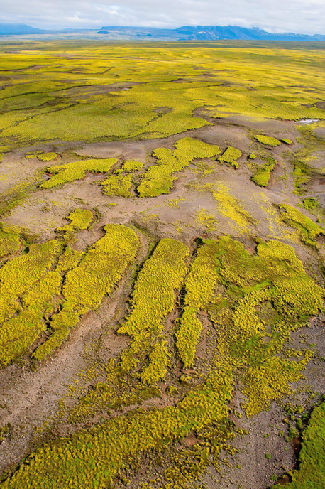 YG_Iceland--71.jpg