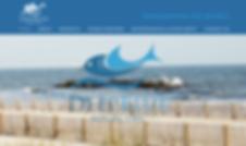 joly-designs-web-design-deepblue.png
