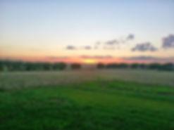 mcm-land-farm-land-pfluger-berkman.jpg