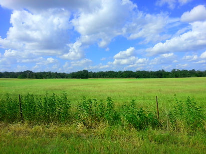 central-texas-land-for-sale-owner-financ
