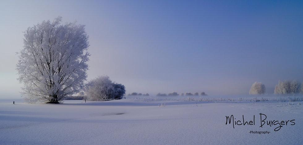 Winter in de uiterwaarden