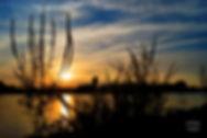 Sunset contrast