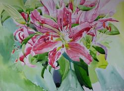 Caryl's Lilies Watercolour 38.5 x 59 cm.