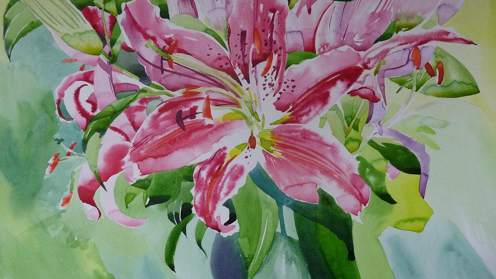 Caryl's Lilies