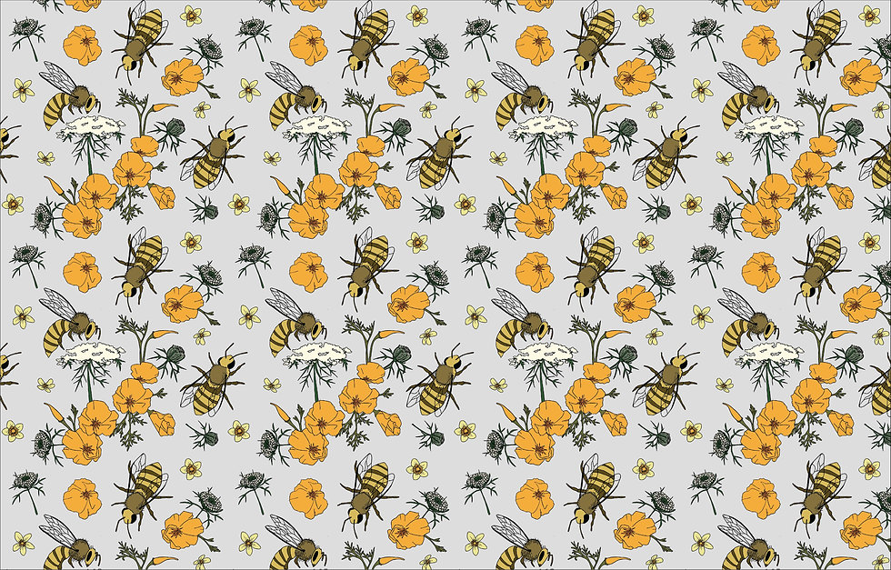 Illustration honeybee poppy queen anne's lace buttercup floral bees botanical wallpaper pattern