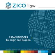ZICO law 20x20cm.jpg