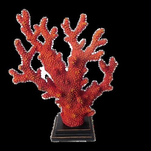 Coral Orange  33cm