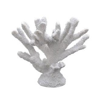 Korall hvit stor
