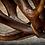 Thumbnail: HJORT  Lysekrone  80cm