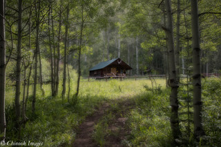 Cabin, White River National Forest