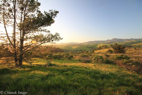 Sunset from Hearst San Simeon State Park.jpg
