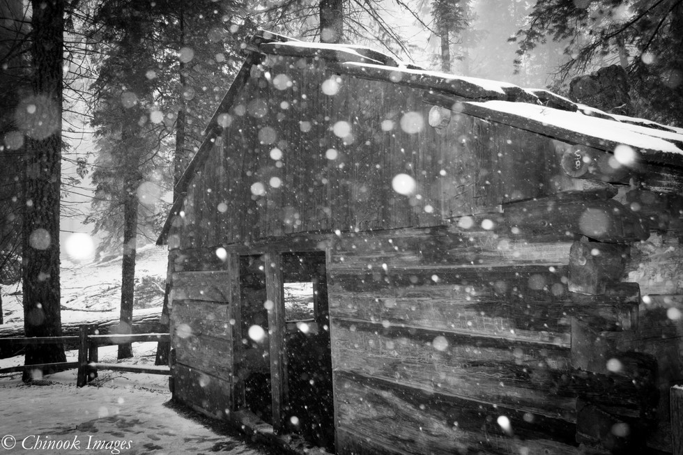 Cavalry Storehouse, Sequoia National Park
