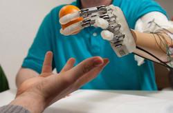 officine ortopediche ricerca