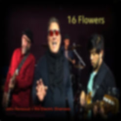 16 Flowers by the Electric Shamans copy