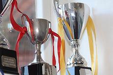 House_cups.jpg