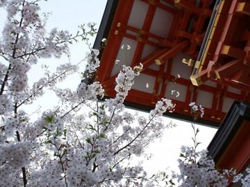 東京の寺院