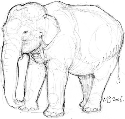 Croquis éléphant