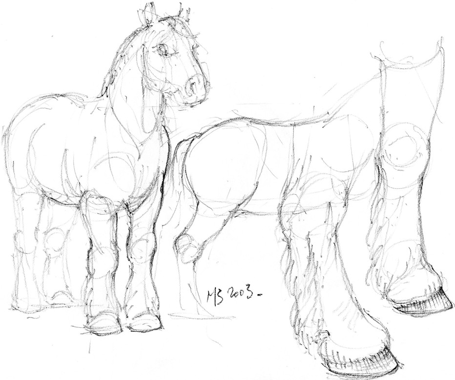 Croquis cheval