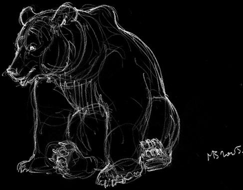 Négatif ours assis