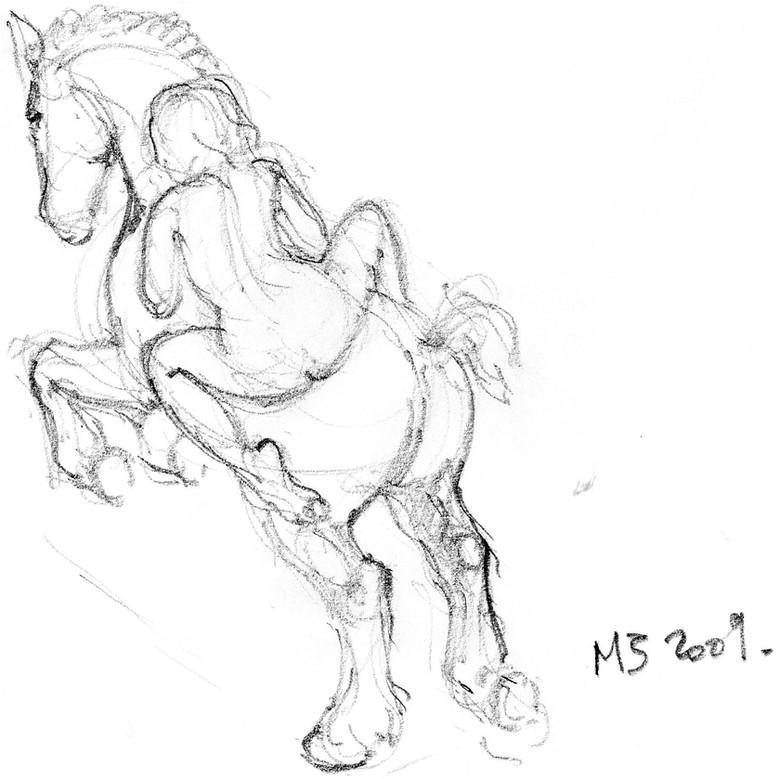 """Croquis cheval """"Amazone"""""""