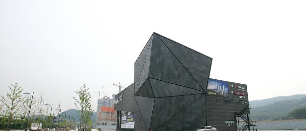 401 Negro Korea 14_large.jpg