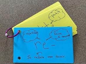 La_morphologie_et_le_développement_du_v