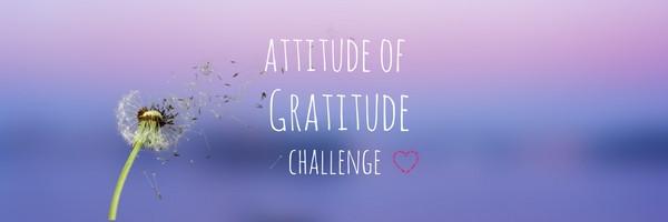 Gratitude - WAG Eve