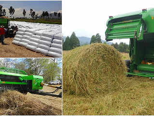 Silage System 1, 2, 3 vs other systems
