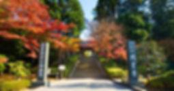 Engaku-ji entry stairs Zen Buddhist Meditation Temple Japan