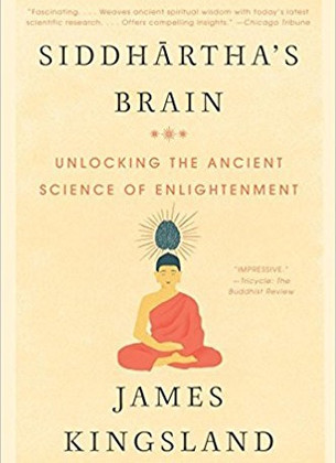 What Would Buddha's Brain Look Like?
