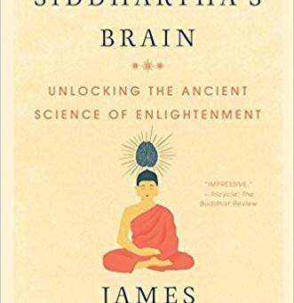 What Would Buddha's Brain Look Like?