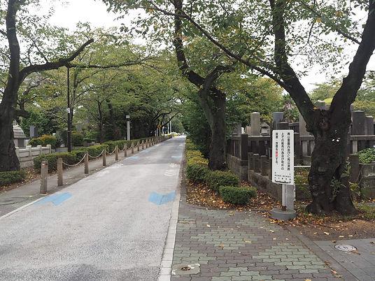Aoyama Cemetery In Tokyo laneway