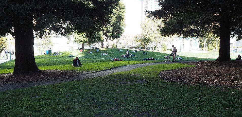 Yerba Buena Gardens lawn